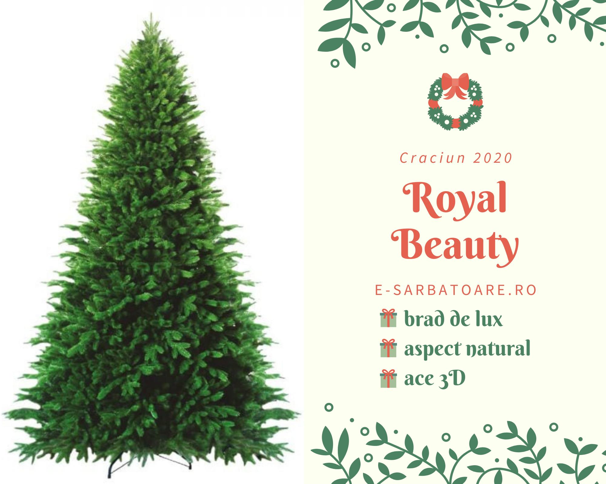 brad royal beauty e-sarbatoare
